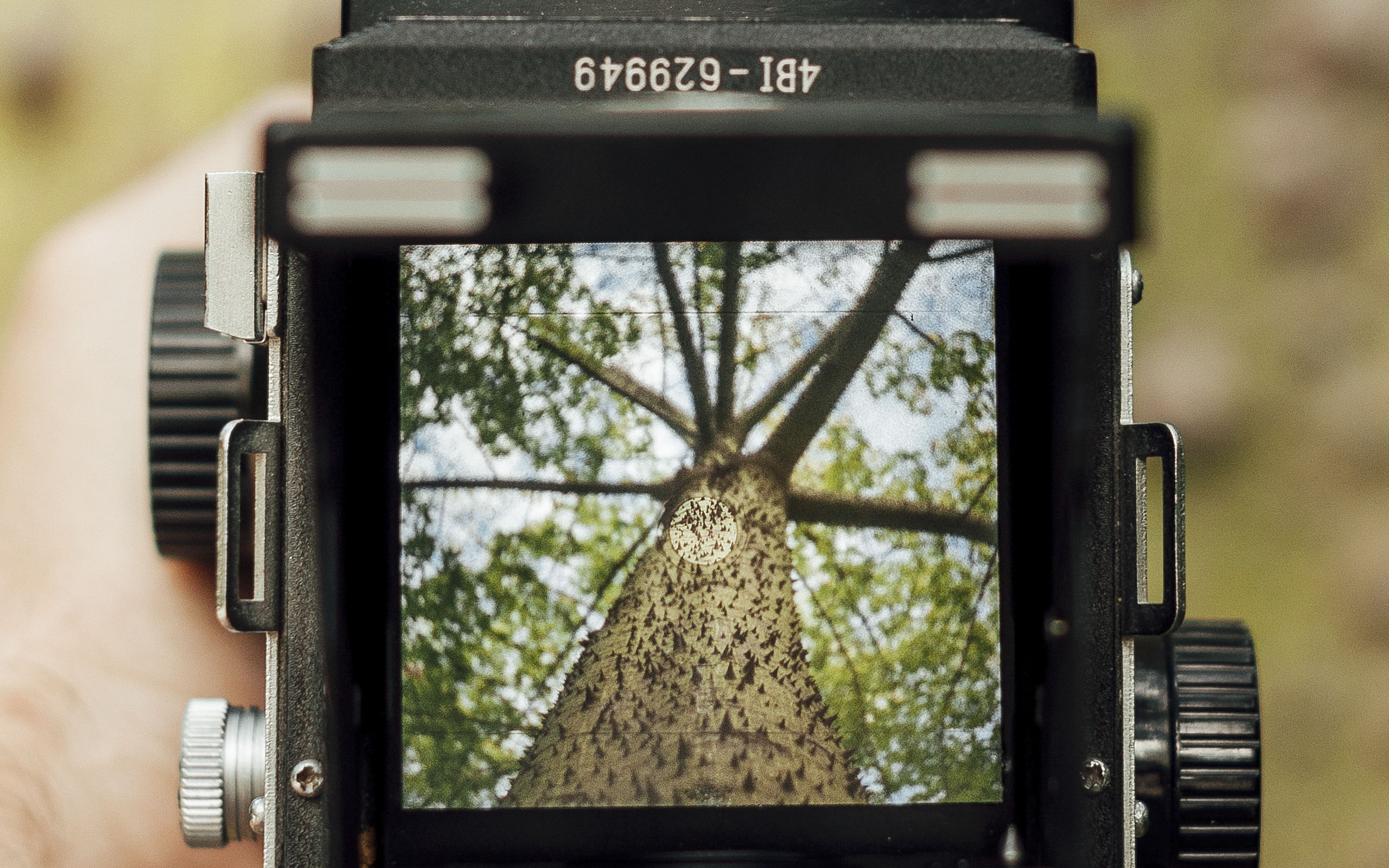 Comienzo cursos de fotografía en septiembre 2017